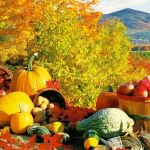 Top Ten Autumn Foods