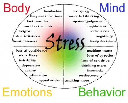 Stress: A Friend Or Foe?