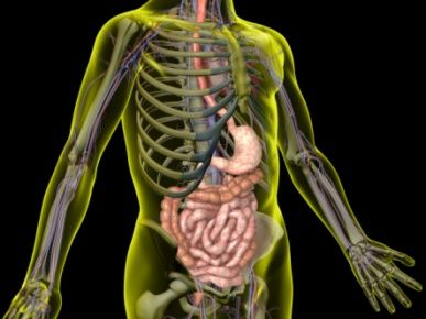 Colon Hydrotherapy – the Good and the Bad