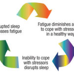 How to Reset Your Circadian Rhythm
