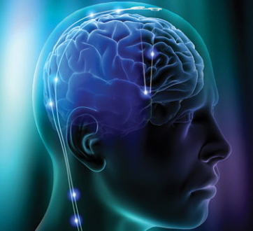 3 Things You Can Do Daily to RADICALLY Improve Your Brain Function