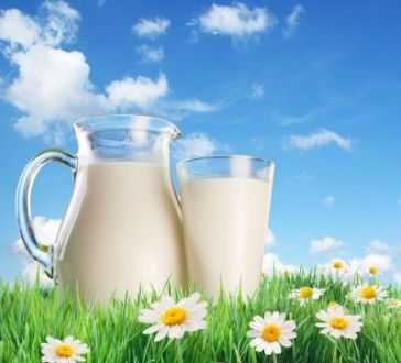 """""""A Land Of Milk and Honey"""" – Two Forgotten Powerful Medicines. Part 1"""