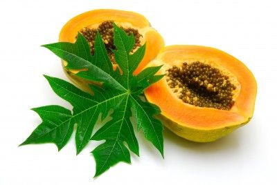 5 Benefits of Papaya and Its Leaves