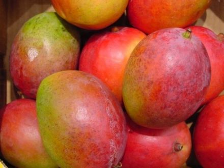 The Health Benefits of Lusciously Sweet Mangoes
