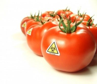 GMO and Your Health
