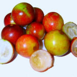 Camu Camu Amazing Health Benefits