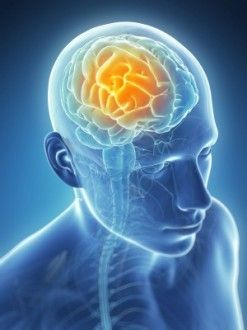 DETOXING FOR BRAIN HEALTH – NEW RESEARCH FINDINGS: CranioSacral Therapy Improves Glymphatic Cleansing of Brain Tissue