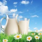 11 Amazing Health Benefits of Raw Goat Milk
