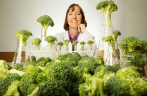 Broccoli to Reduce the Risk for Skin Cancer