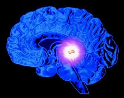 Pineal Gland: The Must-Knows Of Its Functions, Nemesis and Saviors