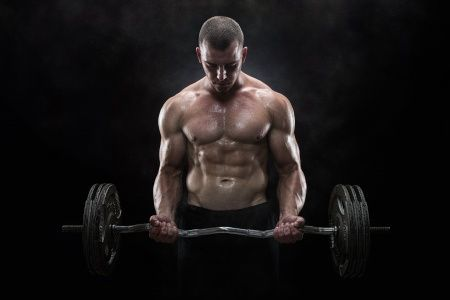 Muscle Building – What Does It Really Take to Build Muscle: Part 2