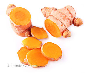 Curcumin: Natural Protection against Toxic Mercury Exposure