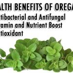 Endless Health Benefits Of Oregano Oil