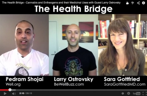 The Health Bridge – Power Of Entheogens and Their Medicinal Uses