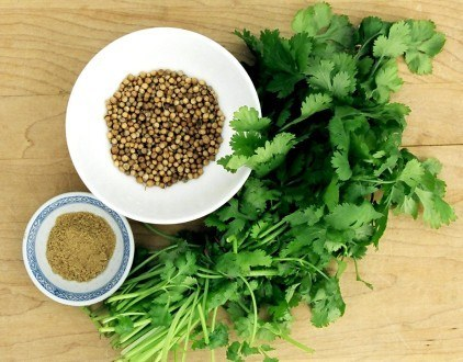11 Health Benefits Of Coriander You Must Know About!