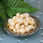 Macadamia Nut Oil Better Than Coconut Oil?