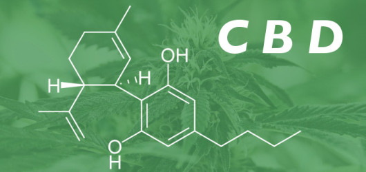 What Is CBD and Why You Need To Know About It