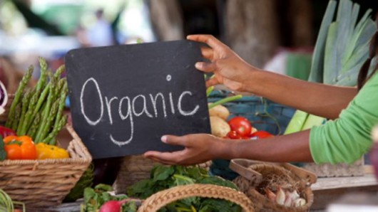 Avoid These 15 Organic Foods to Save Your Money