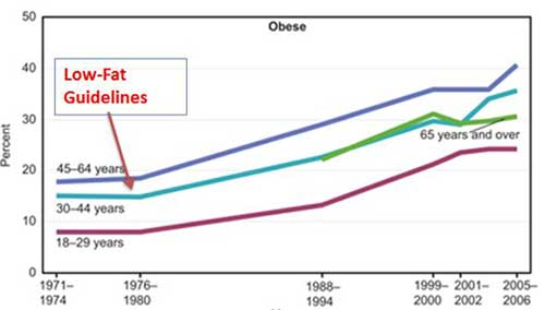 obese-chart
