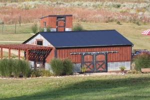 Using the basic 32′ gutters from the barn – we can collect almost 250 gallons of rain water during a single rain