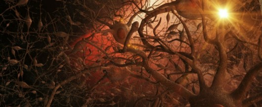 A Promising New Alzheimer's Treatment is Here