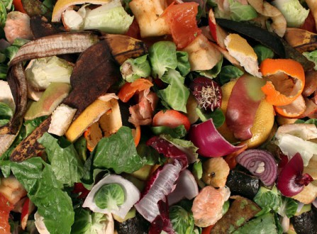 6 Feasible Ways to Help Reduce Food Waste