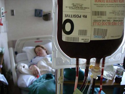 What Are the Blood Types Really for?