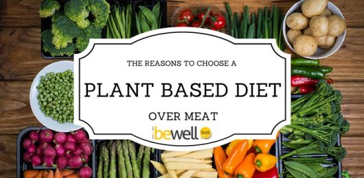 <thrive_headline click tho-post-37092 tho-test-93>The Plant-Based Diet: Why It's Better</thrive_headline>
