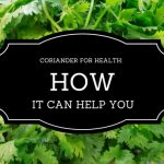 Eating Coriander for Health: How It Helps You