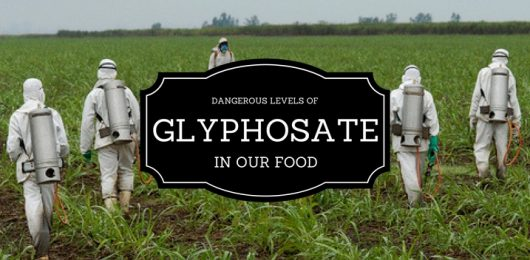There's Copious Amounts of Glyphosate in Our Foods!
