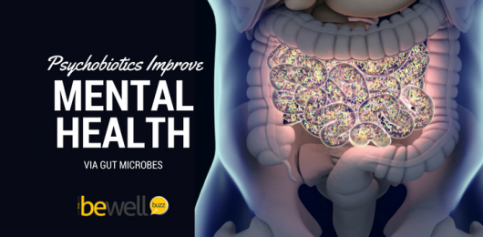 Psychobiotics Improve Mental Health Via Gut Microbes