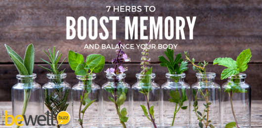 7 Herbs to Boost Memory and Balance Your Body Systems