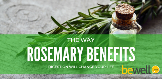 <thrive_headline click tho-post-44564 tho-test-251>The Way Rosemary Benefits Digestion Will Change Your Life</thrive_headline>