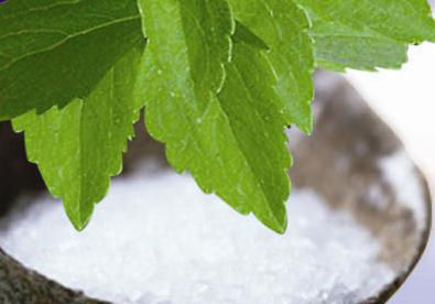 Natural, Healthy and Sweet – The Benefits of Stevia