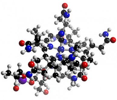 Vitamin B12 Deficiency Can Lead to Childhood Brain Damage