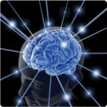 Brain Workouts – Effective Ways to Exercise Your Brain