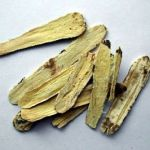 Astragalus Root Benefits