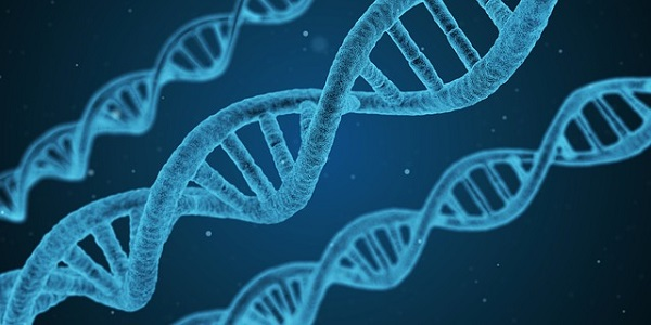 Many extremely rare diseases are caused by genetic mutations.