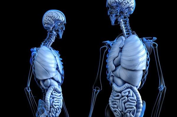 Top 20 Rare Diseases – Gigantism