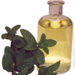 Peppermint Oil for Upset Stomach