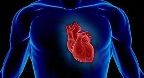 Causes, Symptoms and Natural Remedies For Angina