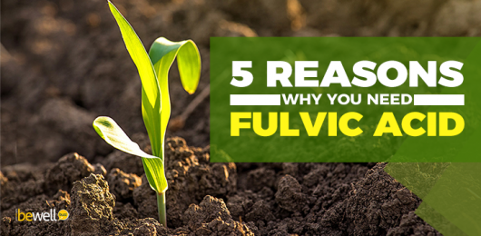 <thrive_headline click tho-post-7579 tho-test-745>What Is Fulvic Acid And Why Is It Important For Your Health</thrive_headline>
