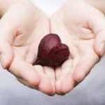 Beets for Cardiovascular Health