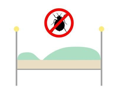 10 Ways To Get Rid Of Bed Bugs Naturally!