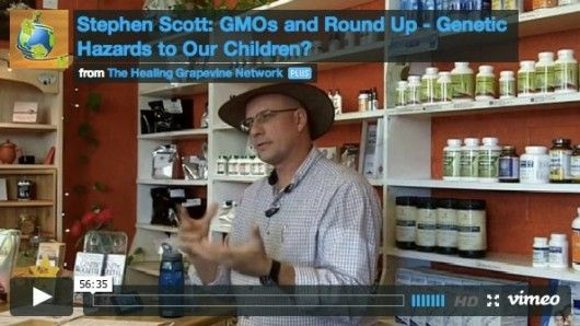 The REAL Danger Of Monsanto GMOs