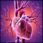Want To Avoid Heart Attack? Stop Doing Excessive Cardio Exercise!