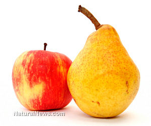Antibiotics in Your Organic Apples and Pears Since 1990s?