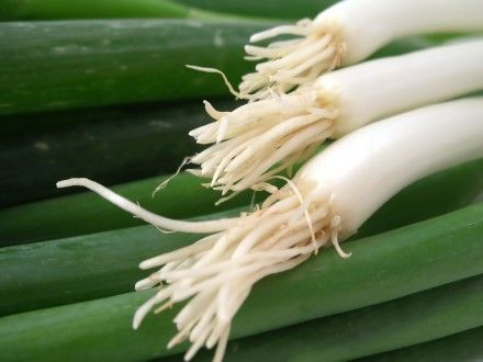 The Health Benefits of Spicy Scallions