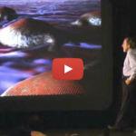 Biology of Belief – by Bruce Lipton