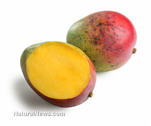 Mango Consumption Staves Off Diabetes and Cancer